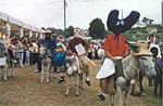 Popular carrera folclórica de burros